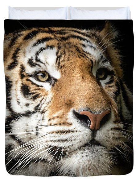 Portrait Of A Bengal Tiger Duvet Cover