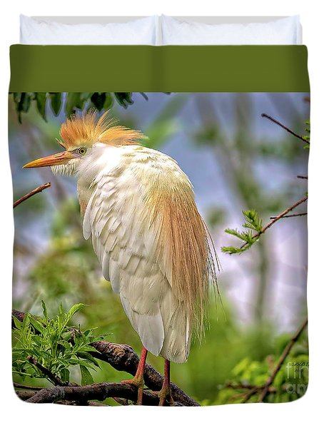 Portrait Of A Cattle Egret Duvet Cover