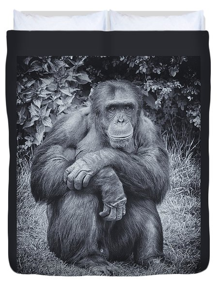 Portrait Of A Chimp Duvet Cover