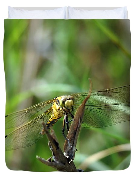 Portrait Of A Dragonfly Duvet Cover