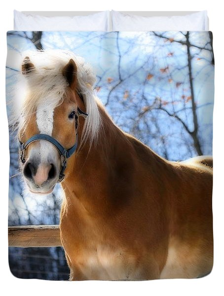 Duvet Cover featuring the photograph Portrait Of A Haflinger - Niko In Winter by Angela Rath