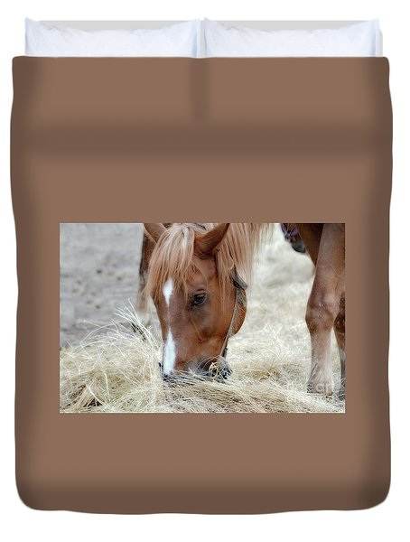 Portrait Of A Horse Duvet Cover by Brenda Bostic