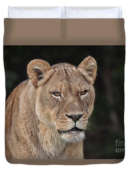 Portrait Of A Lioness II Duvet Cover