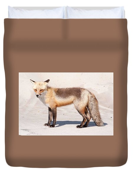Portrait Of A Red Fox Duvet Cover