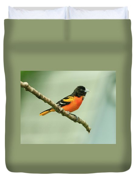 Portrait Of A Singing Baltimore Oriole Duvet Cover