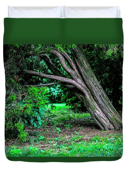 Duvet Cover featuring the photograph Portrait Of A Tree by Madeline Ellis