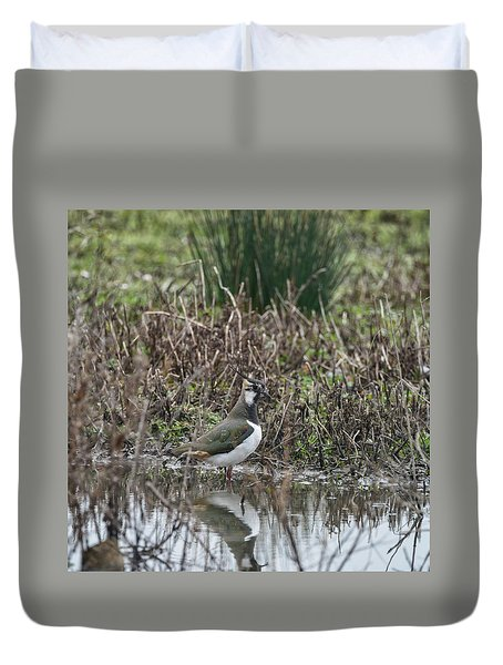 Portrait Of Beautiful Lapwing Bird Seen Through Reeds On Side Of Duvet Cover