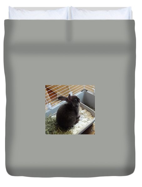 Duvet Cover featuring the photograph Portrait Of Bunbunz by Denise Fulmer