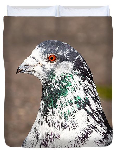 Portrait Of Pigeon Duvet Cover