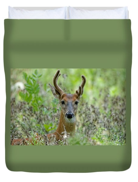 Portriat Of Male Deer Duvet Cover