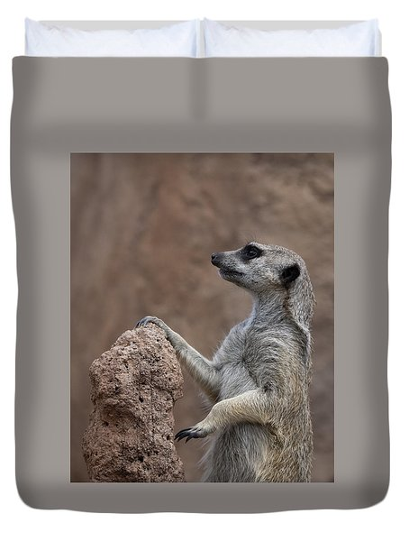 Pose Of The Meerkat Duvet Cover by Ernie Echols