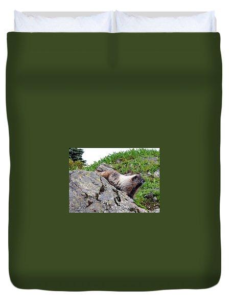 Posing Marmot Duvet Cover
