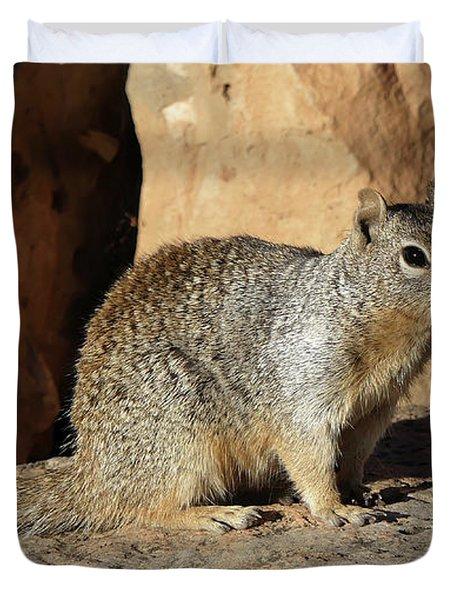 Posing Squirrel Duvet Cover