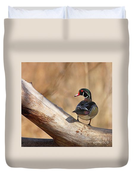 Posing Wood Duck Duvet Cover