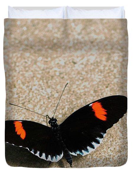 Postman Butterfly Duvet Cover