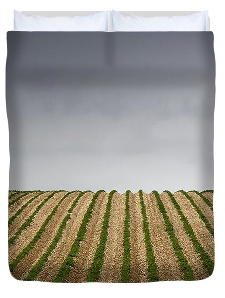 Potato Field Duvet Cover by John Short