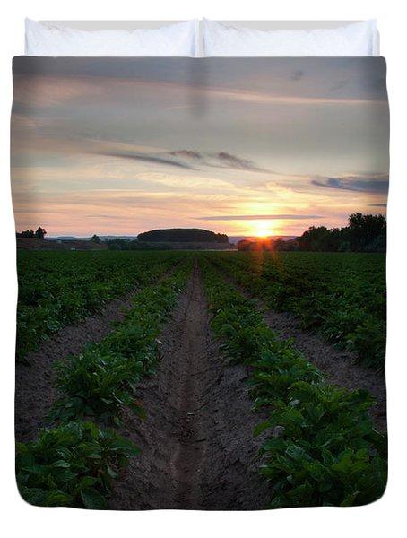 Potato Field Sunset Duvet Cover