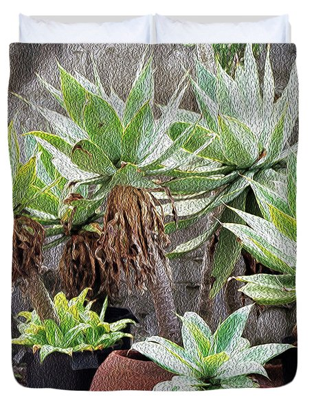 Potted Agave Plants Duvet Cover