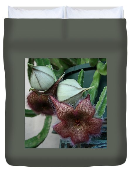 Duvet Cover featuring the photograph Potted Starfish by Marna Edwards Flavell