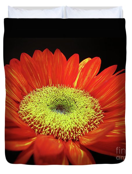 Prado Red Sunflower Duvet Cover