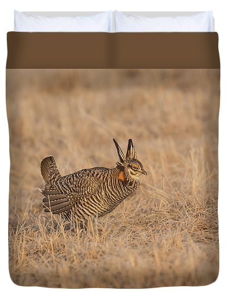 Duvet Cover featuring the photograph Prairie Chicken 6-2015 by Thomas Young