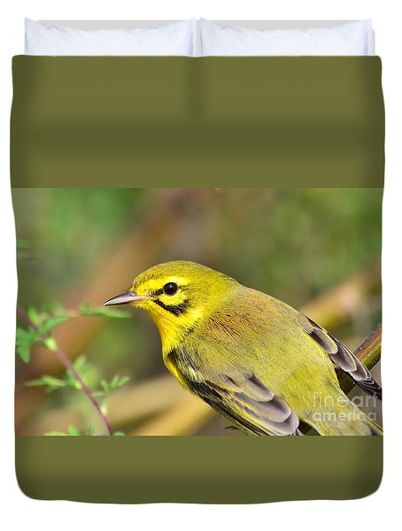 Duvet Cover featuring the photograph Prairie Warbler by Kathy Gibbons