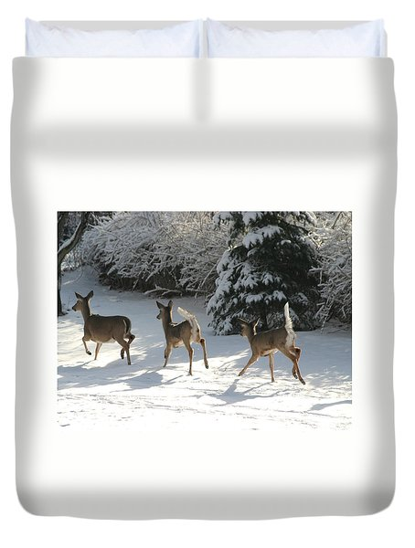 Duvet Cover featuring the photograph Prancing Through The Snow by Living Color Photography Lorraine Lynch