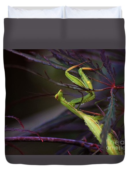 Praying Mantis Duvet Cover by Erica Hanel