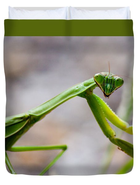 Praying Mantis Looking Duvet Cover by Jonny D
