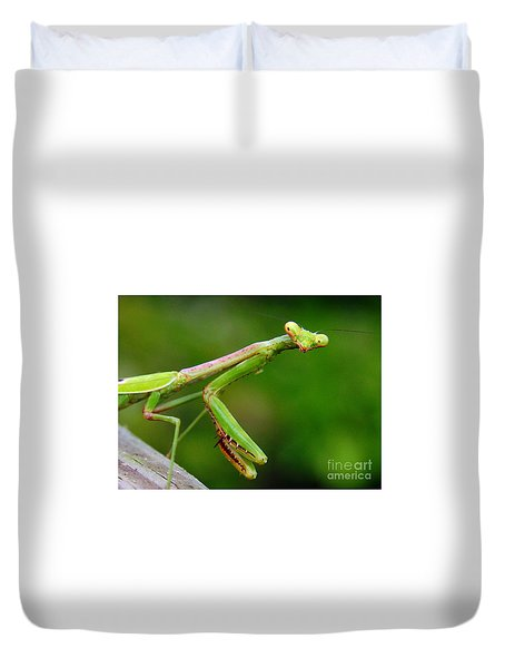 Duvet Cover featuring the photograph Praying Mantis On Watch by Myrna Bradshaw