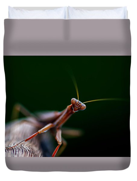 Duvet Cover featuring the photograph Praying Mantis by Rob Hemphill