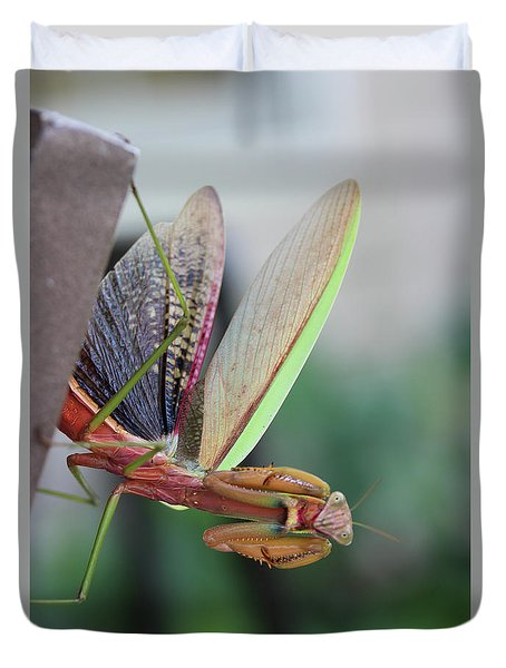 Duvet Cover featuring the photograph Praying Mantis by Stacey Zimmerman