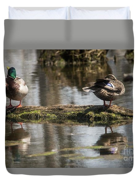 Duvet Cover featuring the photograph Preening Ducks by David Bearden