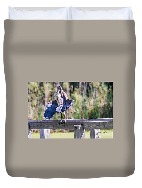 Preening Gret Blue Heron Duvet Cover by Edward Peterson