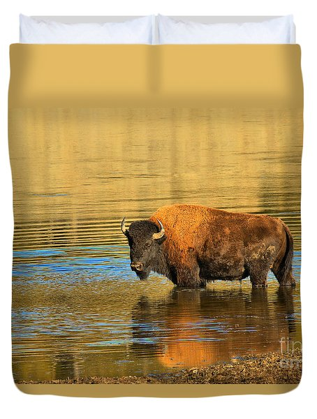 Duvet Cover featuring the photograph Preparing To Swim The Yellowstone by Adam Jewell