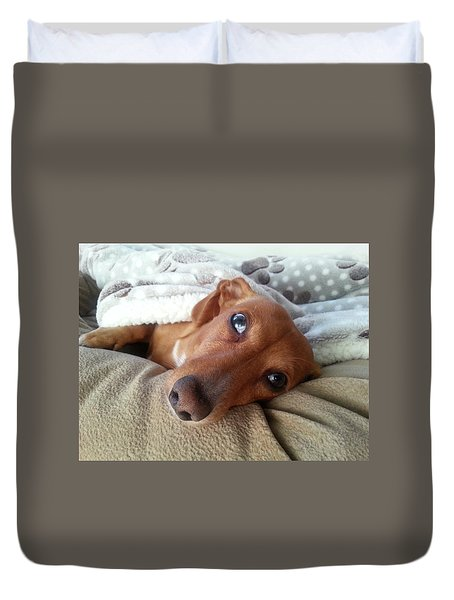 Pretzel By Chera Duvet Cover