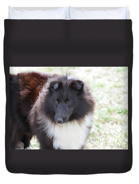 Pretty Black And White Sheltie Dog Duvet Cover