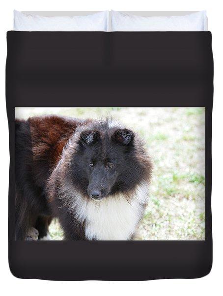 Pretty Black And White Sheltie Dog Duvet Cover by DejaVu Designs