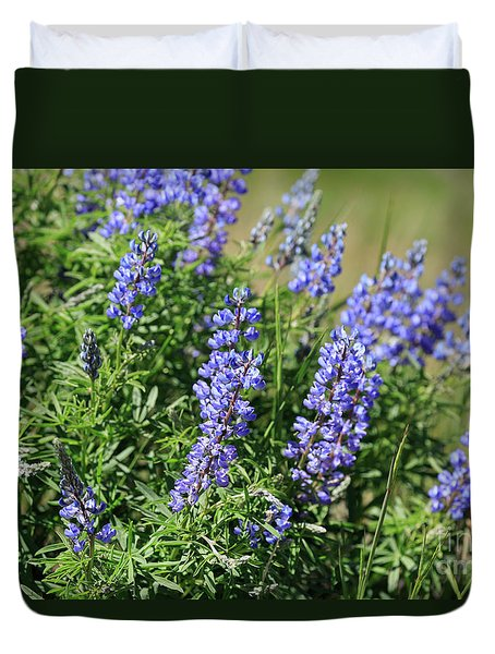 Pretty Blue Flowers Of Silky Lupine Duvet Cover by Louise Heusinkveld