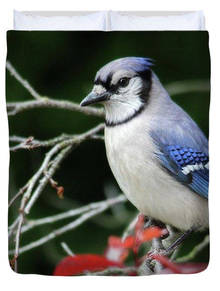 Pretty Blue Jay Duvet Cover