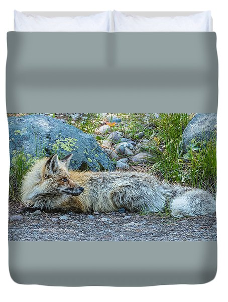 Duvet Cover featuring the photograph Pretty Boy Fox In Spring by Yeates Photography