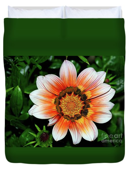 Duvet Cover featuring the photograph Pretty Gazania By Kaye Menner by Kaye Menner