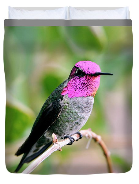 Pretty In Pink Anna's Hummingbird Duvet Cover