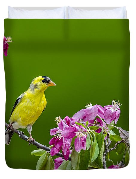 Pretty In Pink Finch Duvet Cover