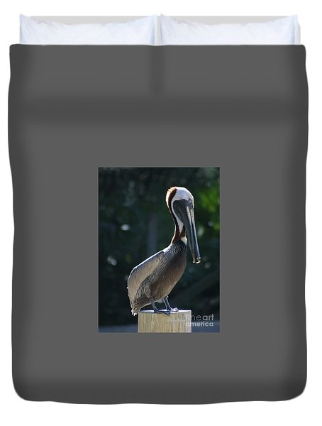 Duvet Cover featuring the photograph Pretty Pelican by Dodie Ulery