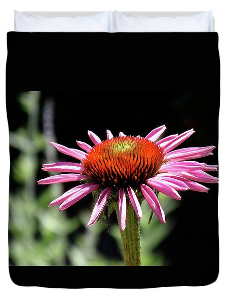 Pretty Pink Coneflower Duvet Cover by Rona Black