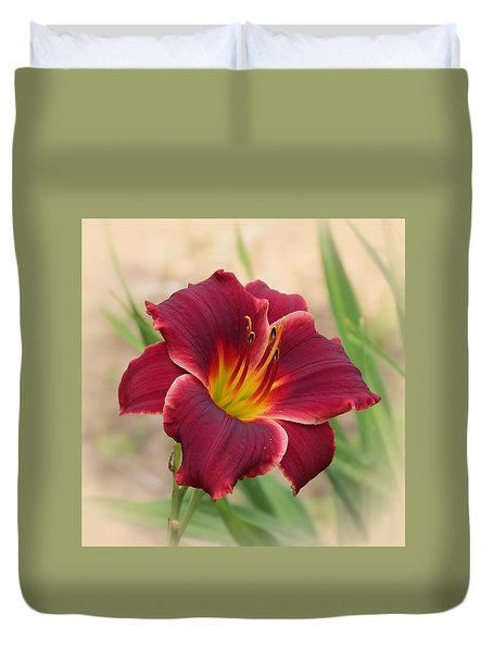 Priceless - Pocket Change Daylily Duvet Cover by MTBobbins Photography