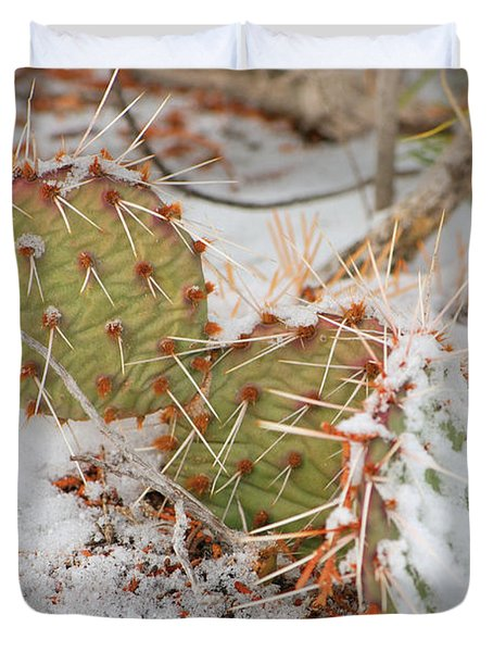 Prickley Pear Cactus Duvet Cover by Donna Greene