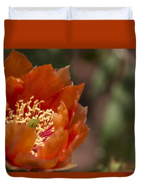 Prickly Pear Bloom Duvet Cover by Laura Pratt