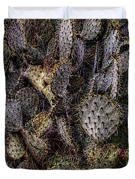 Prickly Pear Cactus At Tonto National Monument Duvet Cover